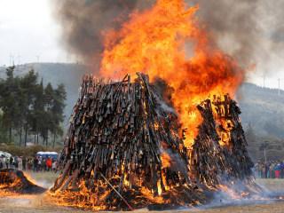 Kenya Sets Over 5,000 Seized Guns Ablaze to Deter Crime