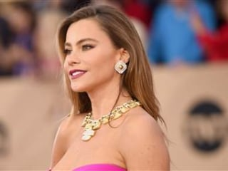 'Modern Family' Star Sofia Vergara Sued By Her Own Frozen Embryos
