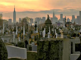 In the Future, Death Will Be a Lot Greener — and a Bit Creepy