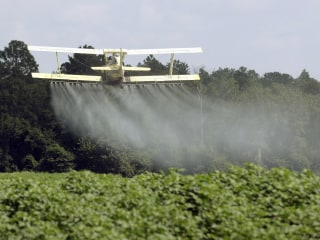 Dow Chemical Pushes White House to Kill Risk Study Showing Pesticide Dangers