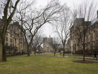 Yale Dean Placed on Leave Over 'Reprehensible' Yelp Reviews