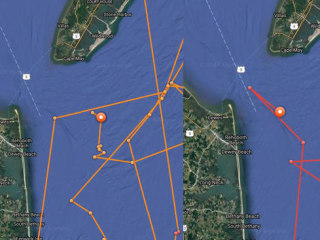 Great White Sharks Surface Near Jersey Shore and Delaware