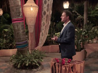 'Bachelor in Paradise' Suspended Over 'Allegations of Misconduct'