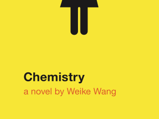Weike Wang Combines Humor, Science, and Depression in Debut Novel 'Chemistry'