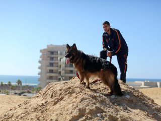 Hamas Bans Dog Walking in the Gaza Strip