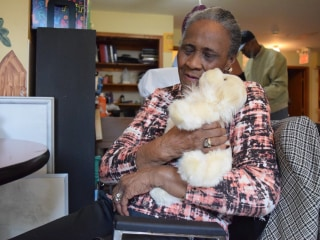 Students Make Smart Companion Animals for Alzheimer's Patients