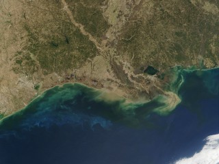 Why This Year's 'Dead Zone' in Gulf of Mexico Is Bigger Than Ever