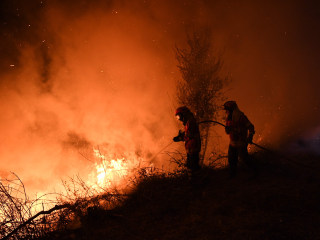 Portugal and Spain Wildfires Kill at Least 41