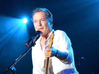 David Cassidy hospitalized with organ failure, needs liver transplant