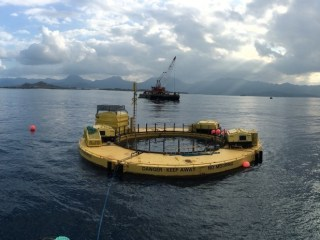 Why wave power may be the next big thing in green energy