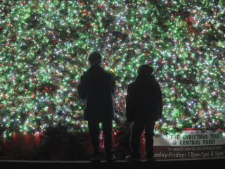 Twinkling holiday lights spread cheer around the world