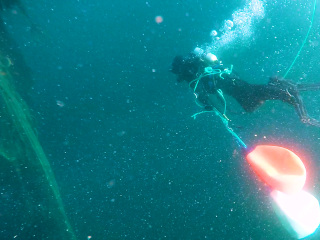 Ghost gear clogging world's oceans is having 'catastrophic' effect, report says