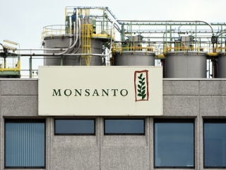 Bayer reaches deal with U.S. for approval to buy Monsanto: WSJ