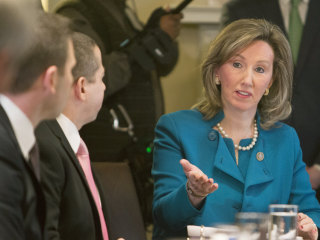 In rapidly changing Northern Virginia, gun debate is a dilemma for Barbara Comstock