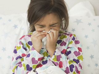 Summer allergies? Dust mites in your bedding may be to blame