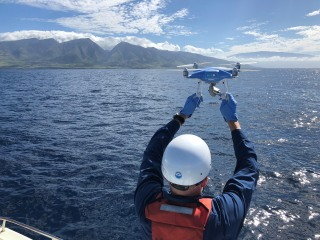 Can flying drones save whales trapped in fishing gear?