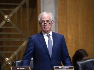 GOP's division on tariffs erupts on Senate floor