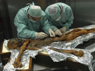 Insides of ancient 'Iceman' shows signs of a well-balanced last meal