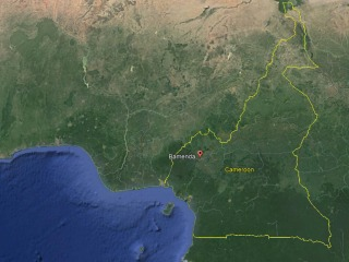 Separatists kidnap 78 students in from Presbyterian school in Cameroon