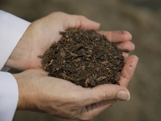Composting of human bodies now legal in Washington state
