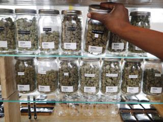 Chronic pain top reason for medical marijuana use, study says