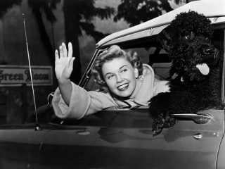 Doris Day's life as a Hollywood star