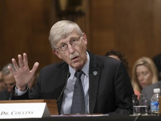No more 'manels,' NIH head says in call to end all-male science panels