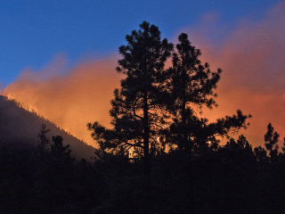 Fire crews battling Arizona blaze get boost from rain, humidity