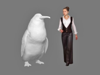 Human-size 'monster' penguin species discovered in New Zealand