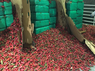 Nearly four tons of pot buried in jalapeños seized in San Diego