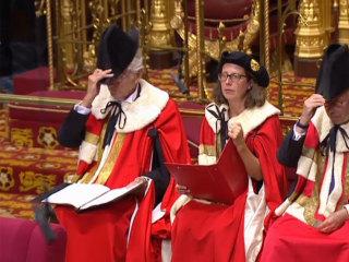 British Parliament shutdown involves robes, Black Rod and flamingos