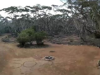 Woman saved by remote security camera after three days lost in Australian bush