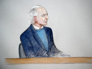 WikiLeaks founder Julian Assange appears confused at extradition hearing