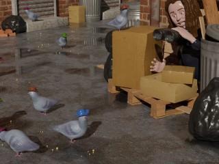 Las Vegas bird rescuer still searching for pigeons wearing cowboy hats