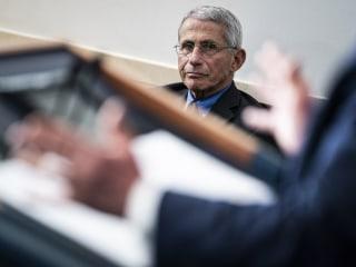 Trump criticizes Fauci's Senate testimony: 'Not an acceptable answer'
