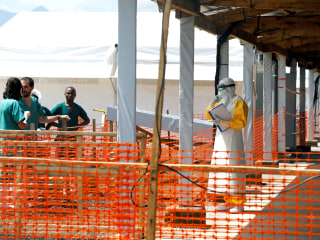 Ebola in Congo: 2nd outbreak of Ebola is reported in Congo, WHO says