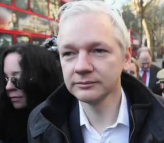 Assange to Richard Engel: No Proof Russians Used WikiLeaks in DNC Leak