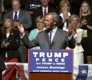 'Brexit' Architect Joins Trump in Attack on Clinton