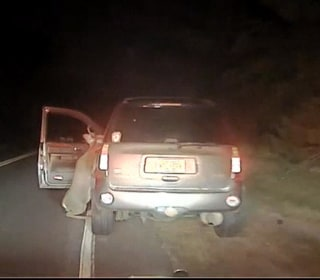 Caught on Camera: Deer Tries to Jump Into Car