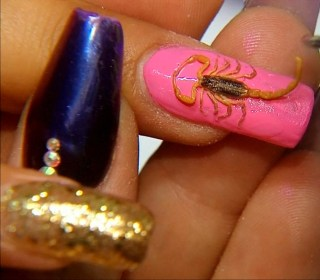 Using Dead Scorpions for Nail Art is Now a Thing