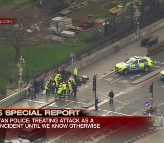 Witness Describes Chaos and Lockdown Following Shooting Near Parliament