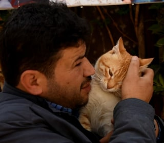 """Cat Man of Aleppo"" Rebuilds Sanctuary for Abandoned Pets"