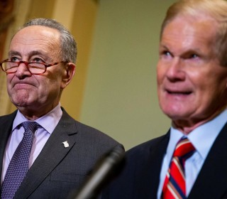 Schumer, Nelson urge Trump to 'stop bullying' Florida election officials