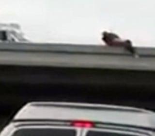 Bridge Jumper Wrestled To Safety