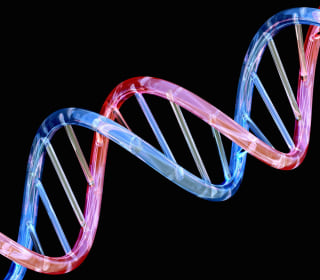 Scientists Warn Genome Data Could Outgrow YouTube, Twitter