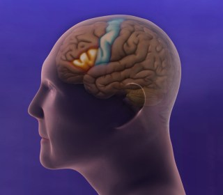 TauRx Alzheimer's Drug LMTX Fails in Large Study Although Some Benefit Seen