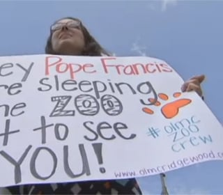 Catholic Flock to Sleep in Zoo During U.S. Papal Visit