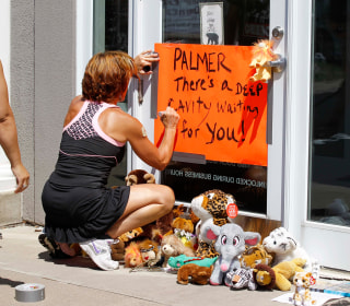 Cecil the Lion's Killer Walter James Palmer Apologizes to Dental Patients