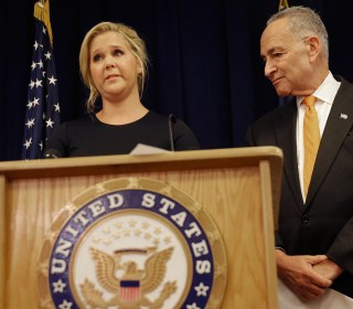 Amy Schumer Joins Chuck Schumer to Call For Tighter Gun Background Check System