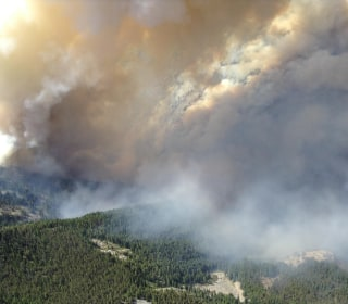 Forest Service, Idaho Work to Boost Logging on Federal Land